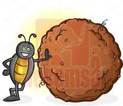 recicla-escarabajo-pelotero