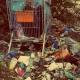 España a la cola de Europa en el reciclaje electrónico